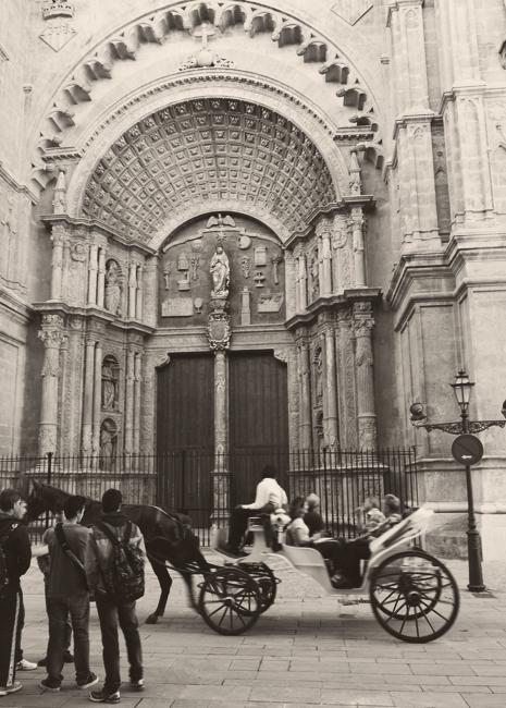 palma_door
