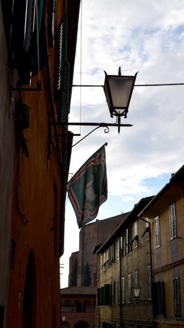 tuscgooseflag