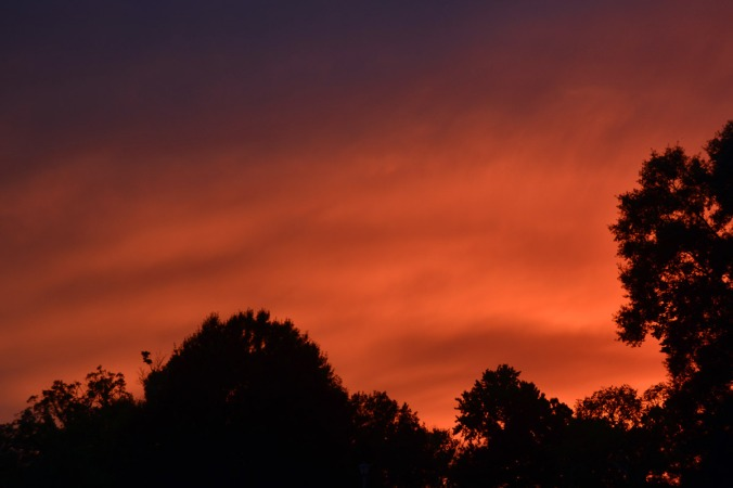 sunset-8aug18